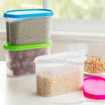 1.1 L Plastic Food Storage Box