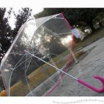 "23"" EVA Clear Umbrella"