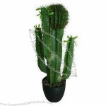 73cm Green and Forceful Artificial Cactus