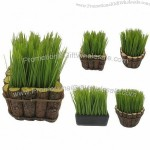 Artificial Plastic Potted Grass Silk Flower Plant for Home Decoration