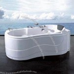 Bathtub with Spray Jets, Faucets, Shower Head and Control Panels