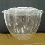 Biodegradable Disposable Plastic Food Container, Suitable for Takeaway Packing