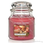 Classic Medium Jar Candle