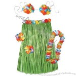 Complete hula outfit includes skirt, bikini top, lei and more.
