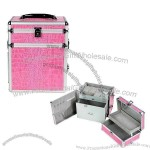 Cosmetic Case(8)