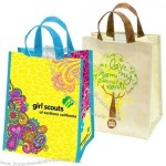 Eco-Friendly Reusable Shopping Bags