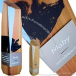 Eco-Friendly Wooden Corporate Awards