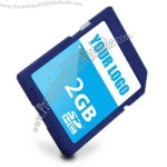 Flash memory SD card.