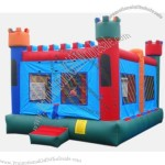 Inflatable Bouncer(11)