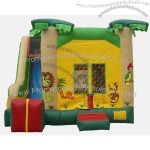 Inflatable Bouncer(6)