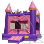 Inflatable Bouncer(7)