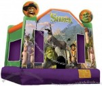 Inflatable Bouncer(9)