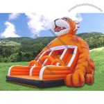 Inflatable Double Slide