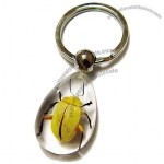 Insect Keychain Yellow Leaf Beetle