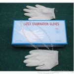 Latex Examination / Surgical Gloves