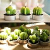 Mini Cactus Candle