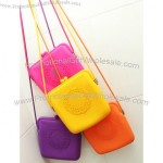 Newest Style Silicone Money Bag