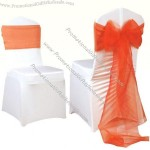 Organza Sashes and Chair Cover