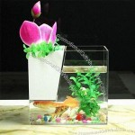 Plexiglass Fish Tanks