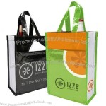Reusable 2-Bottle Recycled Wine Totes