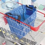 Shopping Cart Pouch with Plastic Handle