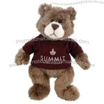 "T-shirt 11"" Plush Bear"