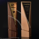 Three-dimensional Cut Wooden Trophy Award