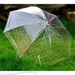 Transparent Umbrella with Dot