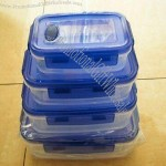 Vacuum Boxes/Food Sealed Box, Suitable for Keeping and Storing Fresh Food