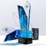 Winner Crystal Trophy